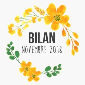 bilannovembre-03